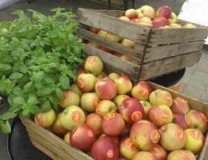 jedzjablka-jedz-jablka-zupawroclaw-zdrowie